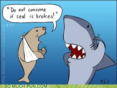 broken,double meaning,literalism,seal,shark,warning