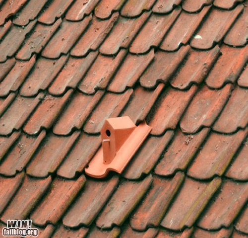 birdhouse clever design roof shingle - 5982662400