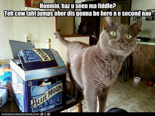 beer blue moon brand cat confused cow fiddle jump moon question - 5982667776