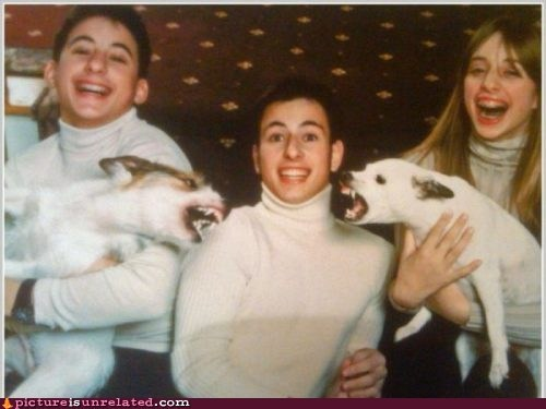 dogs,picture,turtle neck,wtf