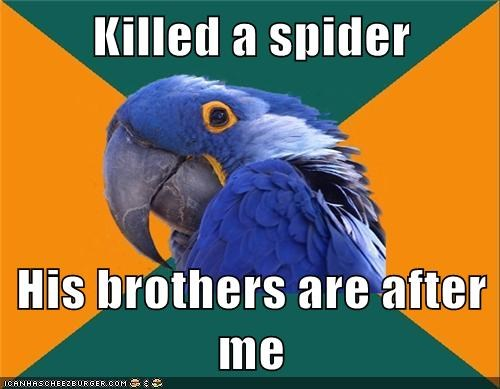 Killed a spider His brothers are after me