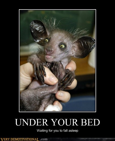 bat hilarious huge monster scary - 5983962624
