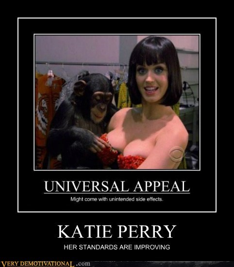 bewbs hilarious katy perry monkey Sexy Ladies - 5984529664