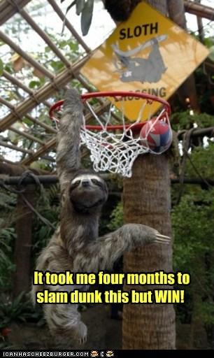 basketball months slam dunk sloth sloths slow win - 5984647424