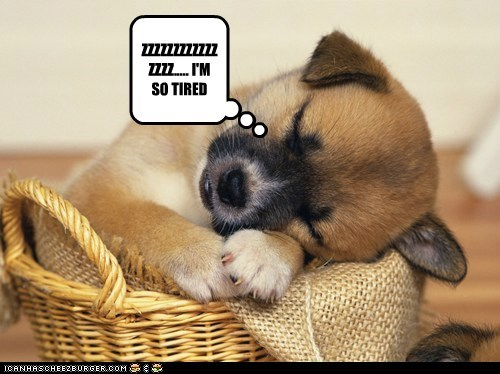 ZZZZZZZZZZZZZZZZ..... I'M SO TIRED