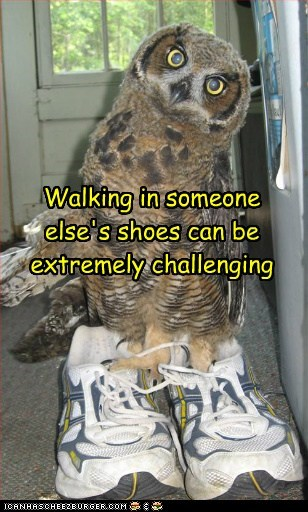 challenging,Owl,shoes,someone else,too big