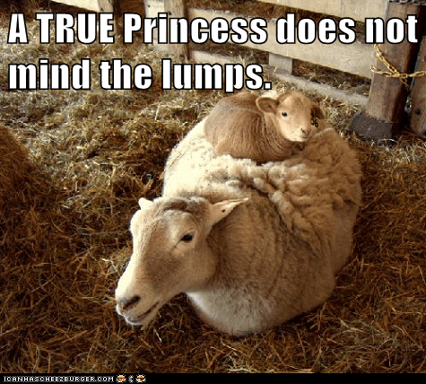 A TRUE Princess does not mind the lumps.