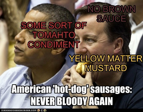 NO BROWN SAUCE YELLOW MATTER MUSTARD SOME SORT OF TOMAHTO CONDIMENT American 'hot-dog' sausages: NEVER BLOODY AGAIN