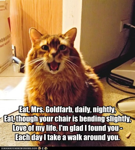 Eat, Mrs. Goldfarb, daily, nightly, Eat, though your chair is bending slightly, Love of my life, I'm glad I found you - Each day I take a walk around you.