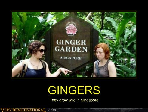 garden,gingers,hilarious,singapore