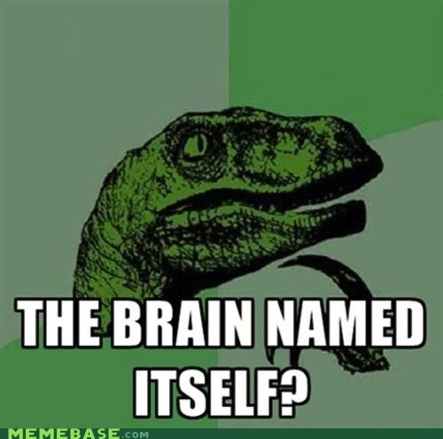 blown,brain,mind,named,philosoraptor