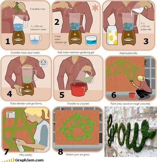 graffit instructions moss planting - 5986422272