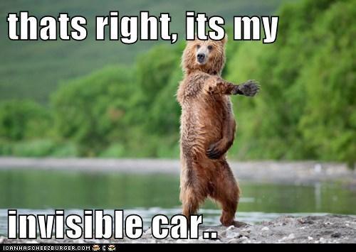 bear car cool invisible - 5986470400