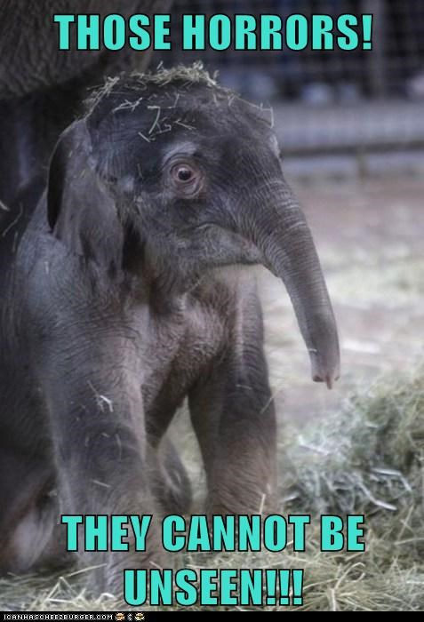 Cannot Be Unseen,dumbo,elephants,horrors,pachyderms,pink elephants,scary