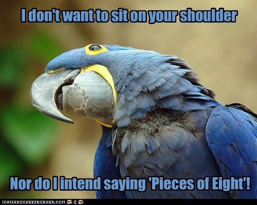 cracker,indignant,parrot,pieces of eight,Pirate,rules,shoulder,sit