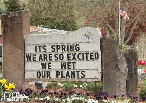 flowers,g rated,pun,sign,spring,win,word play