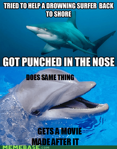 dolphin misunderstood Movie Scumbag Steve shark surfer - 5987022848