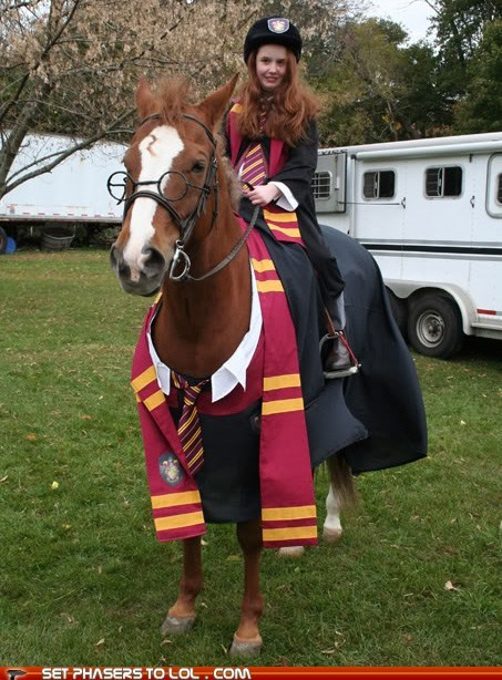 best of the week,cosplay,costume,harry,Harry Potter,horse,lightning scar