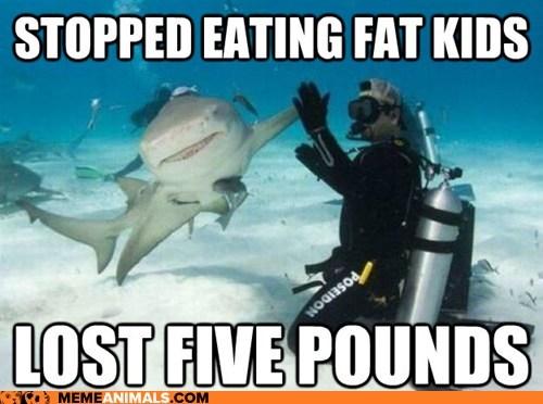 fat Hall of Fame high five Memes shark sharks success shark weight weight loss - 5987472640