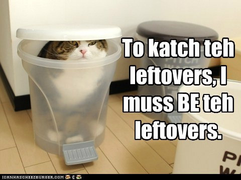 To katch teh leftovers, I muss BE teh leftovers.