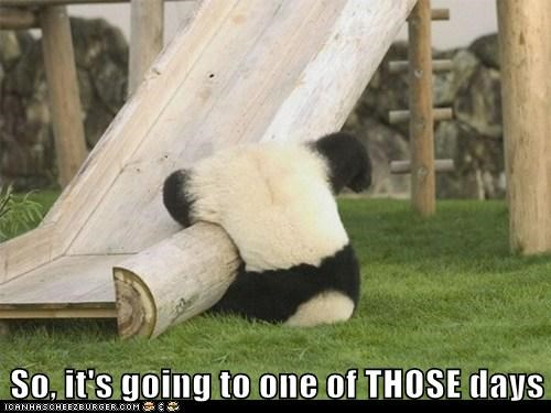 blerg FAIL fall Hall of Fame head monday One Of Those Days panda panda bear slide slides ugh