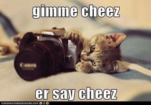 Cheezburger Image 5988029440