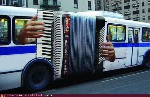 accordion,bus,instrument,wtf