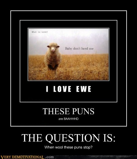 THE QUESTION IS: When wool these puns stop?