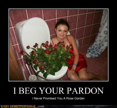 garden,hilarious,rose,toilet