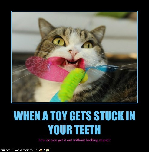 WHEN A TOY GETS STUCK IN YOUR TEETH how do you get it out without looking stupid?