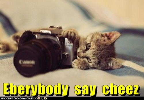 Cheezburger Image 5989778944
