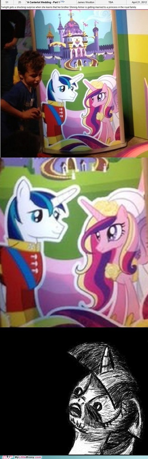 finale season 2 shining armor TV wedding - 5989936896