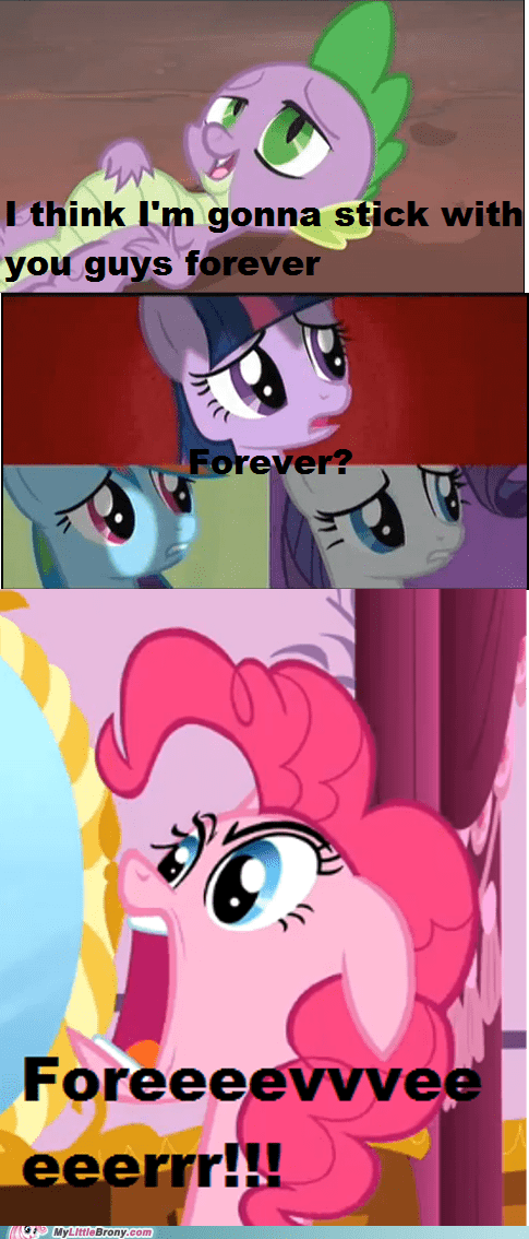 dragons,forever,ponies,spike,TV