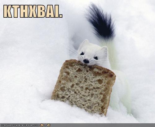 bread ermine kthxbai slice stealing stoat weasel - 5990950144