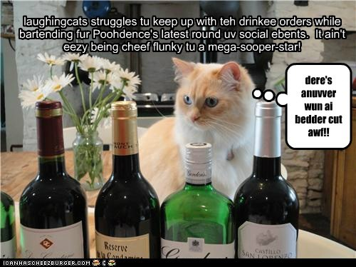 laughingcats struggles tu keep up with teh drinkee orders while bartending fur Poohdence's latest round uv social ebents. It ain't eezy being cheef flunky tu a mega-sooper-star! dere's anuvver wun ai bedder cut awf!!