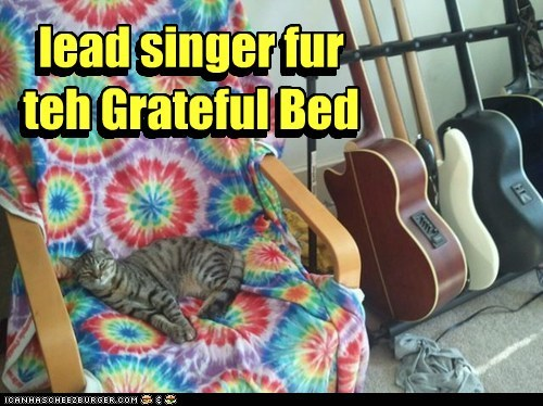 bed,grateful,grateful dead,guitars,pun,sleeping,tie dye