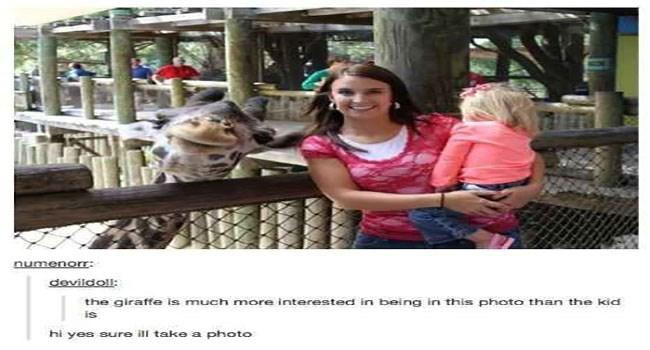 world day tumblr posts giraffes - 5993989