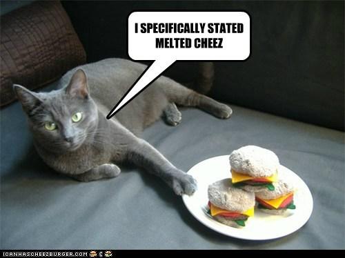 Cheezburger Image 5994355456