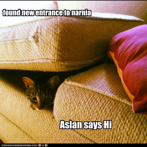 aslan,best of the week,couch,entrance,greetings,Hall of Fame,hello,narnia,new,Portal