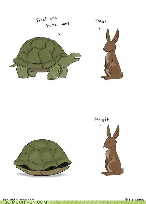 challenge,cheating,Hall of Fame,hare,not really a pun,race,shell,tortoise,unfair