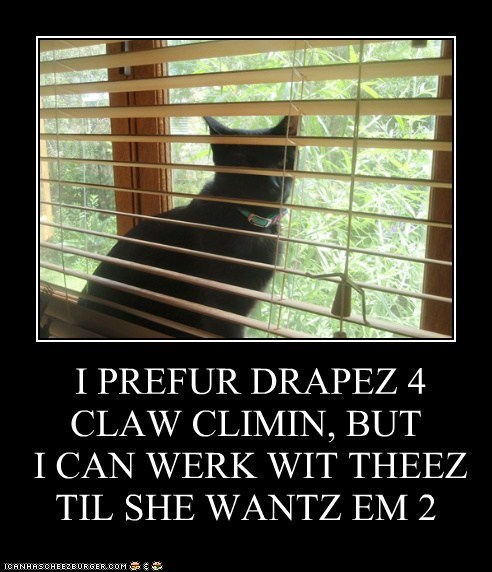 I PREFUR DRAPEZ 4 CLAW CLIMIN, BUT  I CAN WERK WIT THEEZ TIL SHE WANTZ EM 2