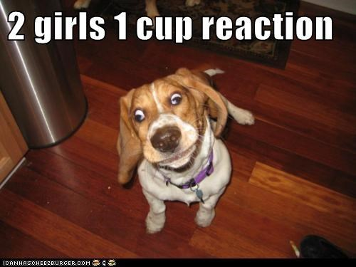 2 Girls 1 Cup Reaction