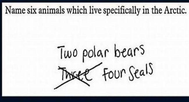 kids ansewrs smartass funny animals exams - 5995013