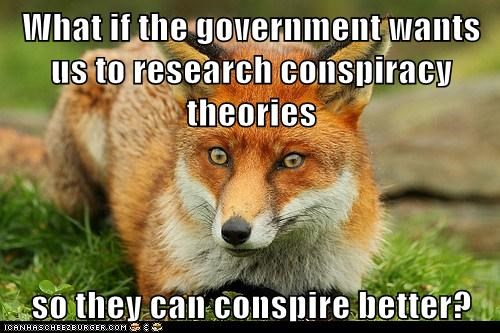 conspiracy crazy fox government paranoid