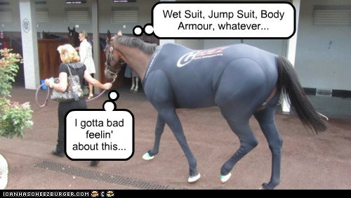 bad feeling,horse,nervous,ominous,water,wet suit