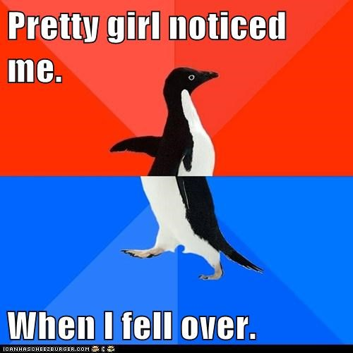 socially awkward penguin - 5998145280