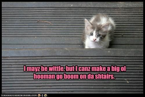 I mayz be wittle, but I canz make a big ol hooman go boom on da shtairs.