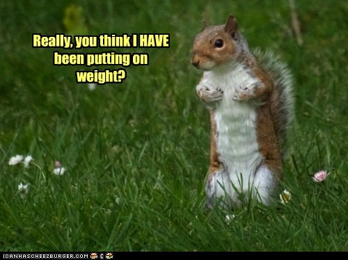 Really, you think I HAVE been putting on weight?