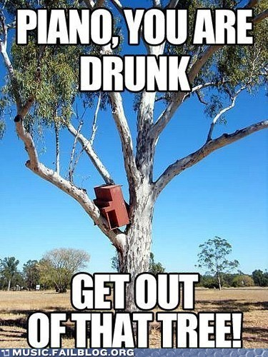 alcohol drinking drunk piano tree - 5998675456