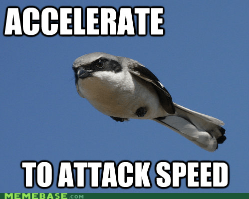 african attack bird Memes swallow - 5999067904